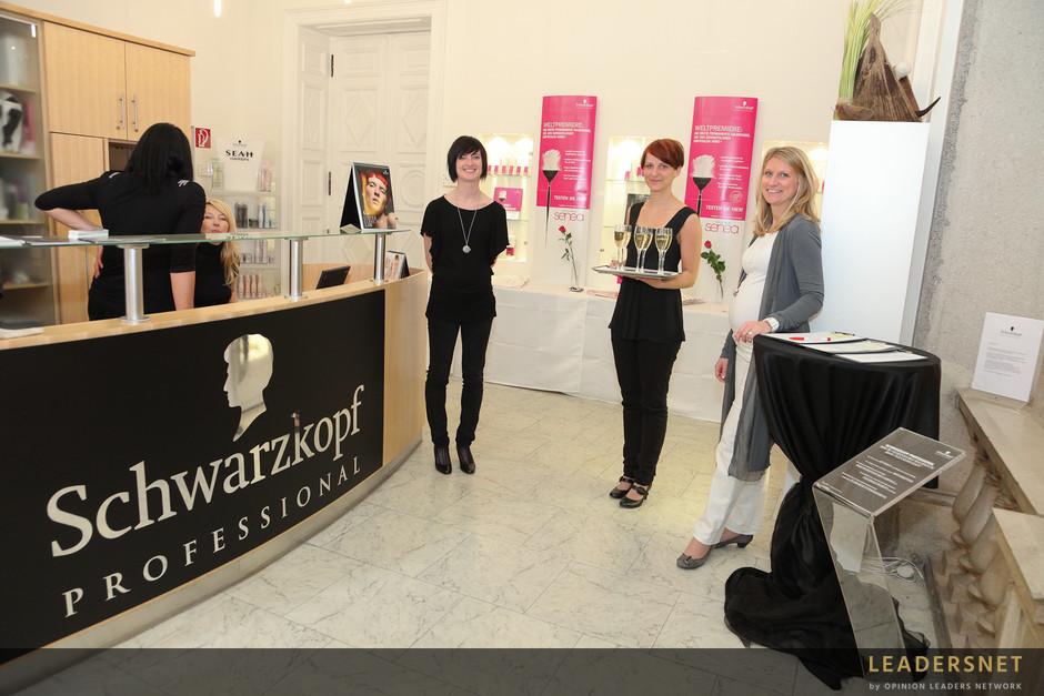 Schwarzkopf Professional Styling Lounge